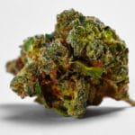 green crack strain spotlight