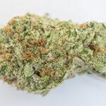 OG Kush Strain Thrive Cannabis