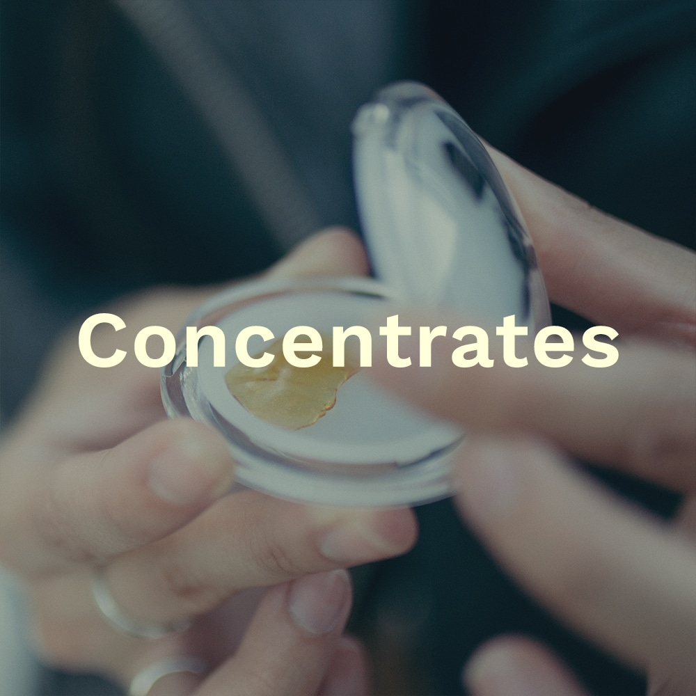 Text on a background of Marijuana Concentrates in a jar
