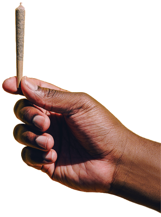 Las Vegas Cannabis Dispensary