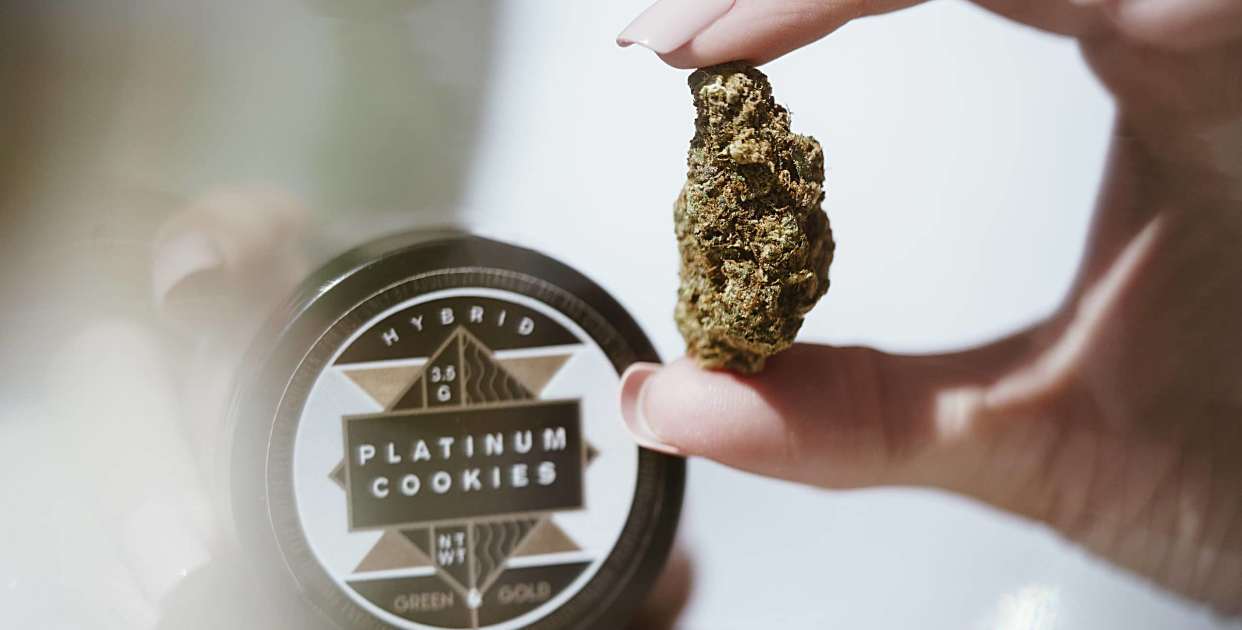 woman holding cannabis flower